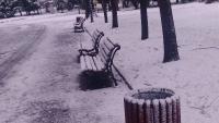 Парков кош 1755 в Борисовата градина_2