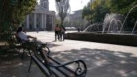 Пейка Виена в Градска градина София